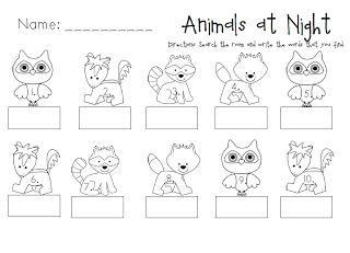 Nocturnal Animals: Write the Room Activity