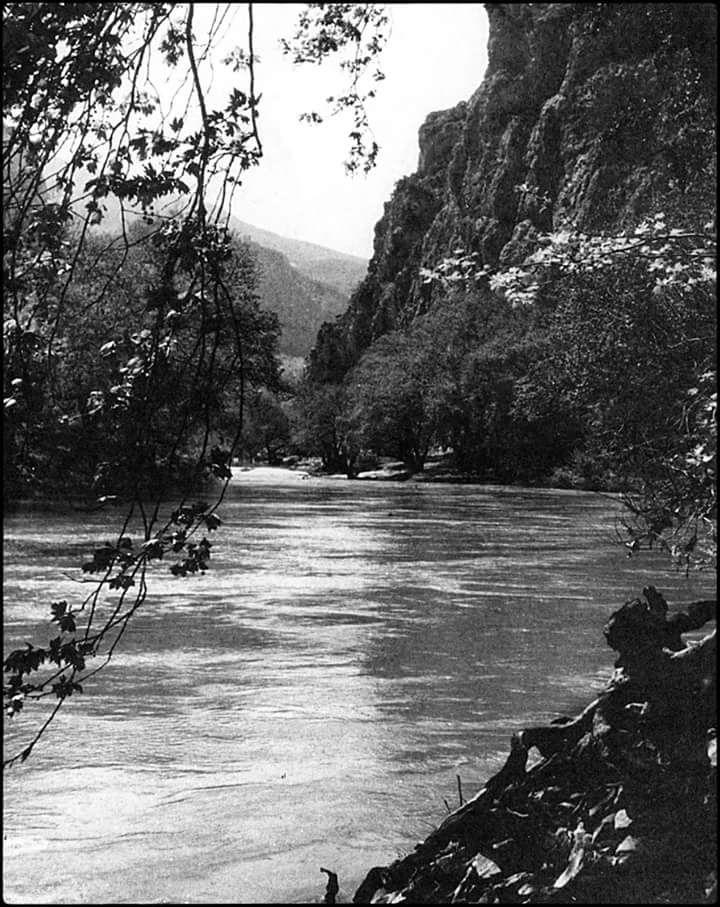 Takis Tloupas,Pinios river,Tempi valley,Larisa,Greece,1955-Πηνειός στα Τέμπη 1955 φωτ.Τάκης Τλούπαςτ