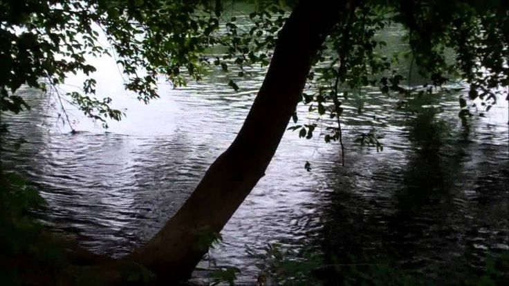 Psalm 27 (KJV) (Audio) 2 1/2 minutes
