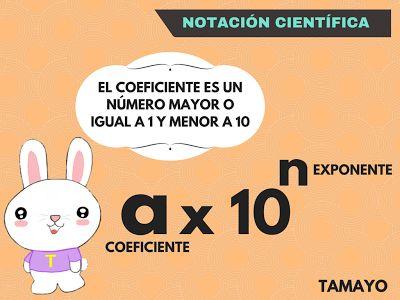 NOTACIÓN CIENTÍFICA - MATEMÁTICAS TAMAYO