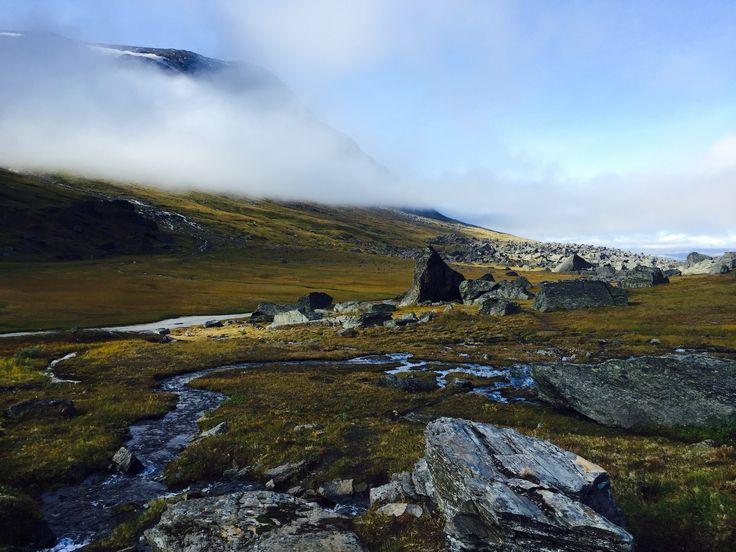 Swedish Lappland. Rissajaure