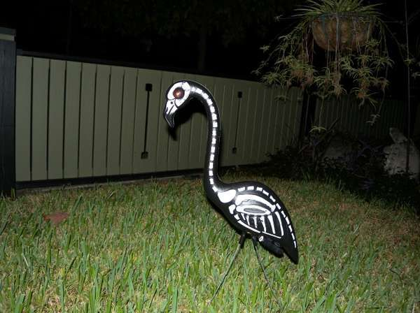 Halloween Lawn Decor - Flamingos With Fricken Laser Beams are a Haunting DIY Project (GALLERY)