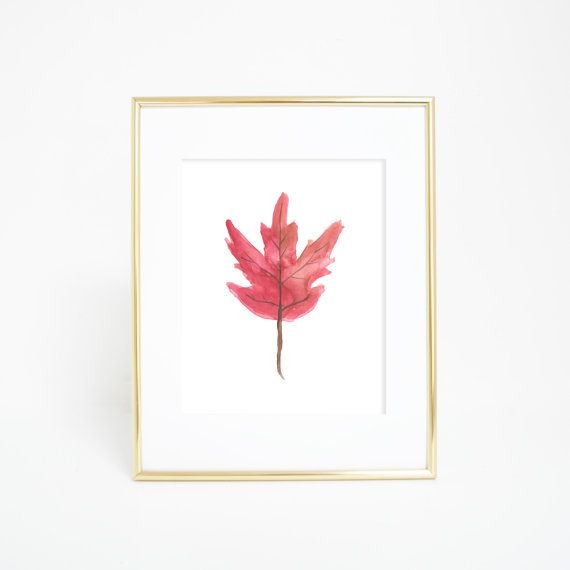 Best 25+ Canadian maple leaf ideas on Pinterest | Canadian ...