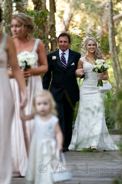 Wedding in a paper-bark forest at Byron @ byron (Byron bay) Photography by Vibrant Imaging