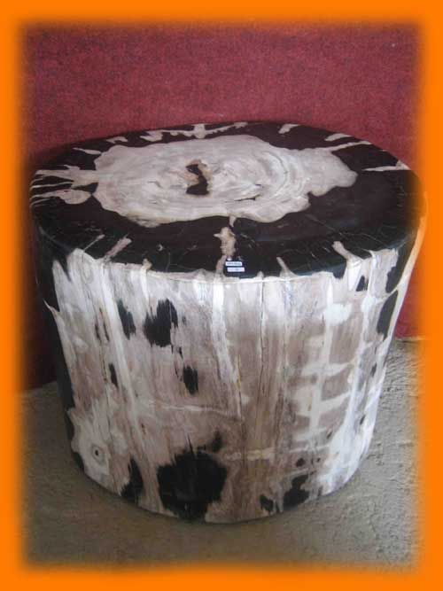 Petrified Wood Occasional Side Table