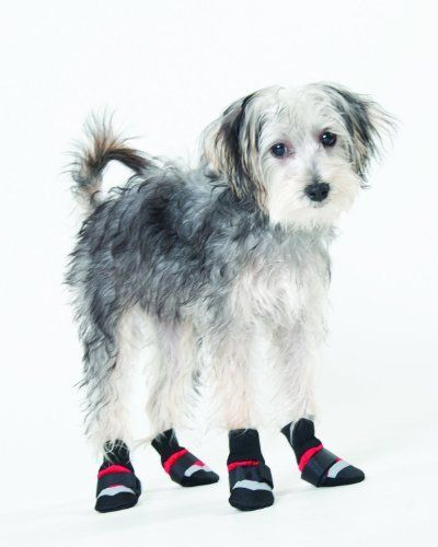 Pin Pa Dog Apparel Accessories