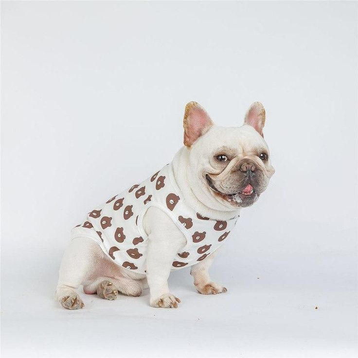Bear Pattern Dog Vest Bulldog Puppies French Bulldog Clothes Bulldog Breeds