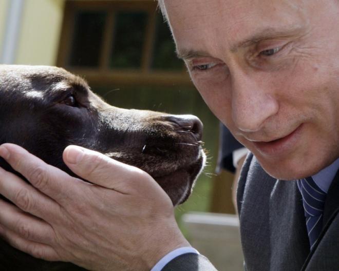 「プーチン 犬」の画像検索結果