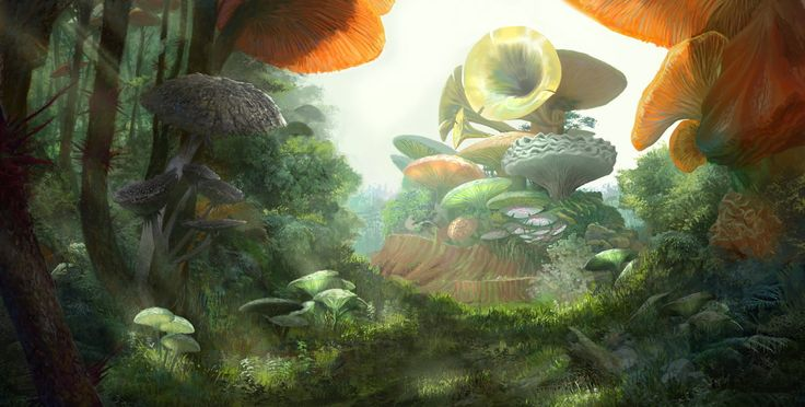 ArtStation - Mushroom Forest, Hyunsu Cha