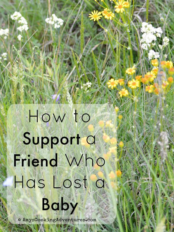 Amy's Cooking Adventures: How to Support a Friend Who Has Lost a Baby {Angel Wings Wednesday}
