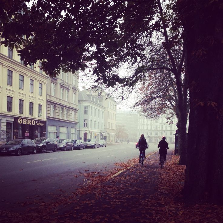 Østerbro Copenhagen november amazing autumn