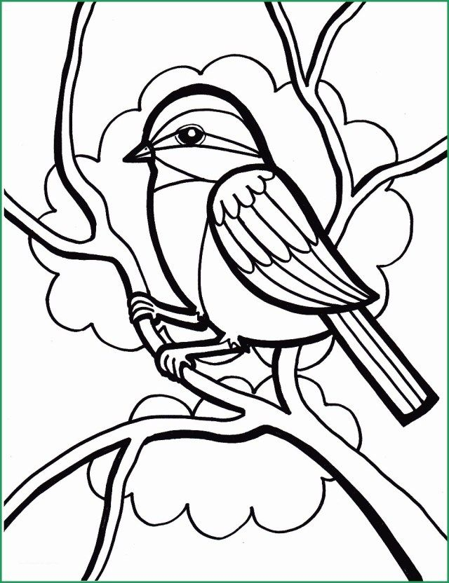 21 Exclusive Picture Of Bird Coloring Pages Spring Coloring
