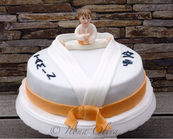 25 Best Ideas About Karate Cake On Pinterest Karate