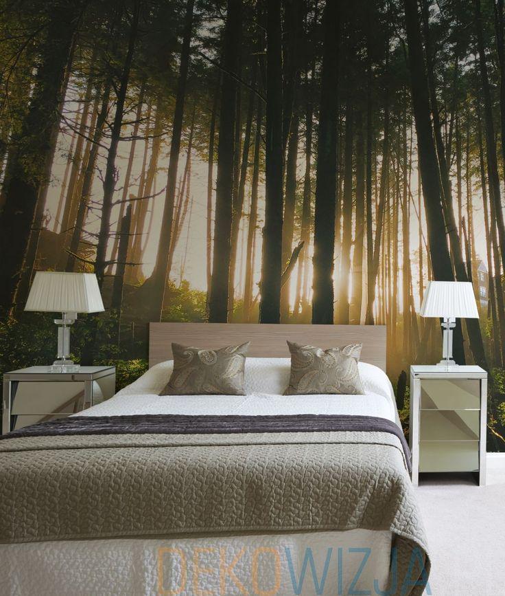 Fototapeta z Porankiem w mglistym lesie