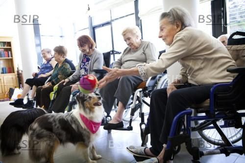 Reportage in the Arpage Victor Hugo retirement home in Pavillons-sous-Bois, France. Zootherapy session.