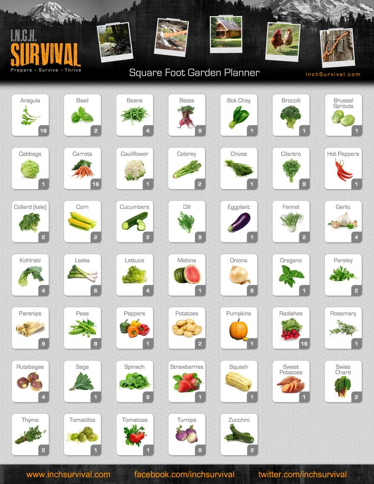 Getting really interested in square feet gardening. This chart is really useful.