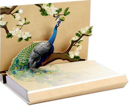 Peacock Feather Notebook Entertaining Peacock Party