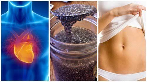 Consigli alimentari ed infusi per accelerare il metabolismo e perdere peso