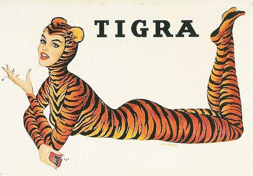 vintagegal:    Tigra Cigarettes ad, illustration by Al Moore 1950's