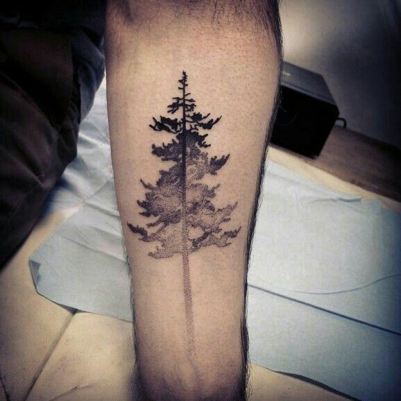 25 great ideas about evergreen tattoo on pinterest for Evergreen tree tattoo