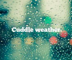 cuddly, rainy weather