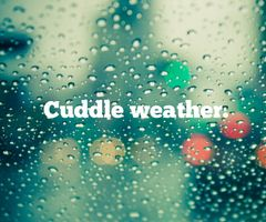 cuddly, rainy weather