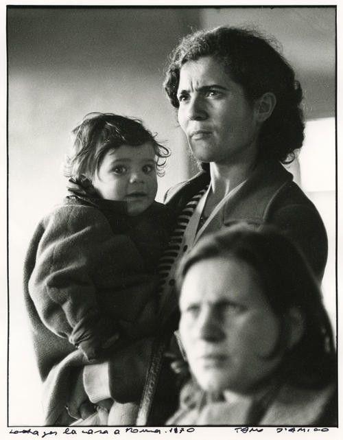 Conversazioni con Tano D'Amico a Roma  http://visionandonellastoria.net/2013/04/12/di-cosa-sono-fatti-i-ricordi-conversando-su-immagini-fotografia-e-storia-con-tano-damico/