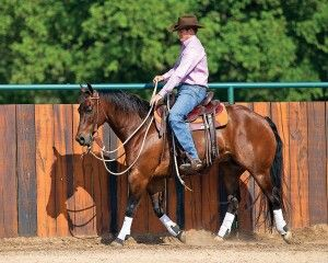 Teach Your Horse to Soften to the Bit- great article & advice on softening, I'll have to give this a try. SF