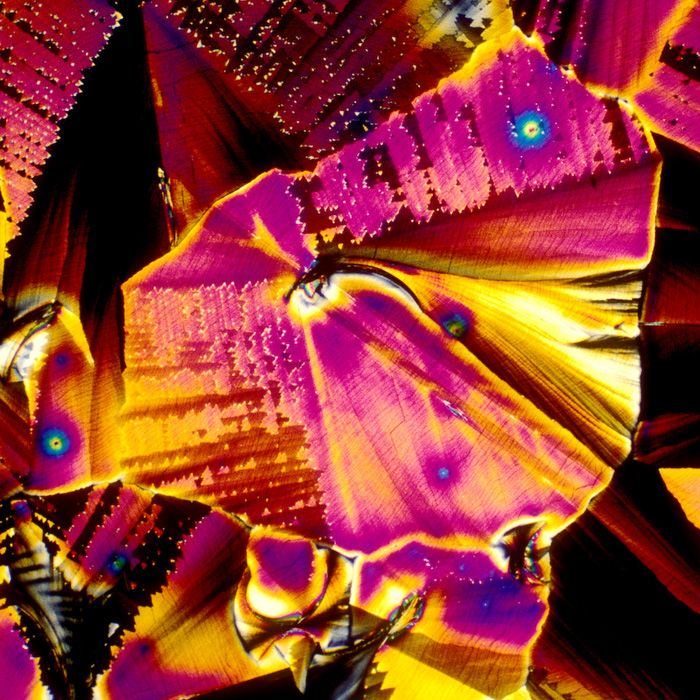 BevShots, Microscope Images of Crystalized Alcoholic Beverages Turned Into Vibrant Modern Art