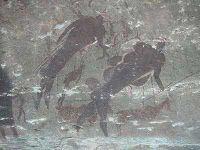 Pinturas rupestres del Kaloo.Hacia el s. XVI, los San entraron en contacto con otras culturas, apareciendo el pastoreo y la agricultura, haciéndoles más sedentarios, empezando los conflictos por la tierra. Acabaron arrinconados en el desierto de Kalahari, Botswana