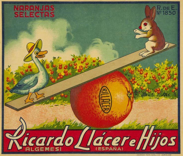 Ricardo Llácer e Hijos : Algemesí (España) : naranjas selectas
