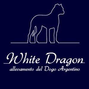 http://www.trovavetrine.it/dogoargentinopadova