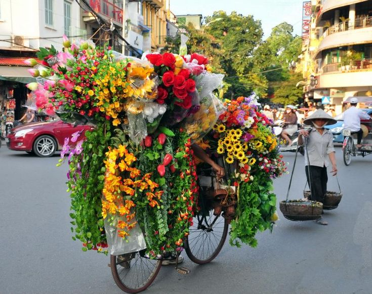 You should have an old bike propped up on the middle landing of the stairs up to the OL all covered in flowers like this!!!  hanoi,city of flowers,vietnam