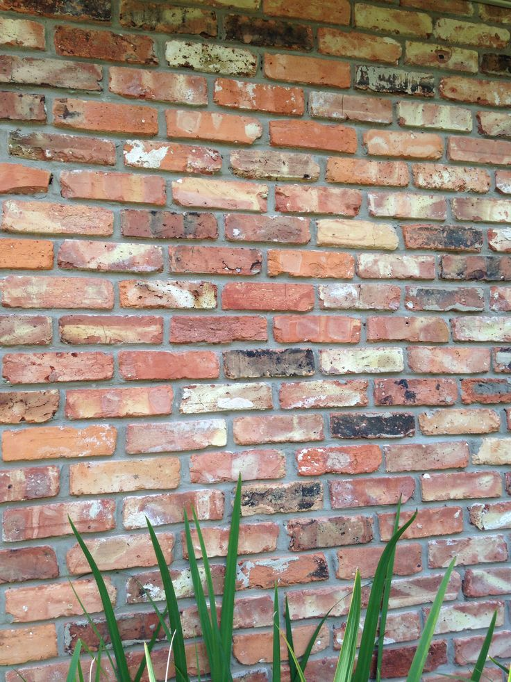 Old Chicago Brick Colors Pinterest Home Chicago And