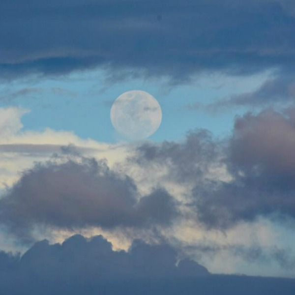 See it! First full moon of 2017 |  EarthSky 1/12/17 In the Northern Hemisphere, the January full moon is sometimes known as the Wolf Moon