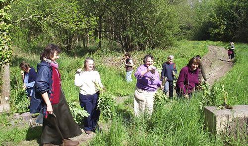 herboristerie familiale Les Cinq Sens - Formations en Médecine Naturelle