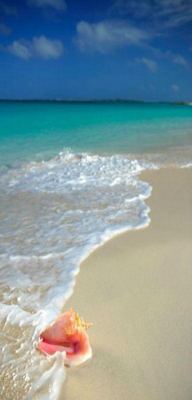 The Bahamas Nassau Paradise Island