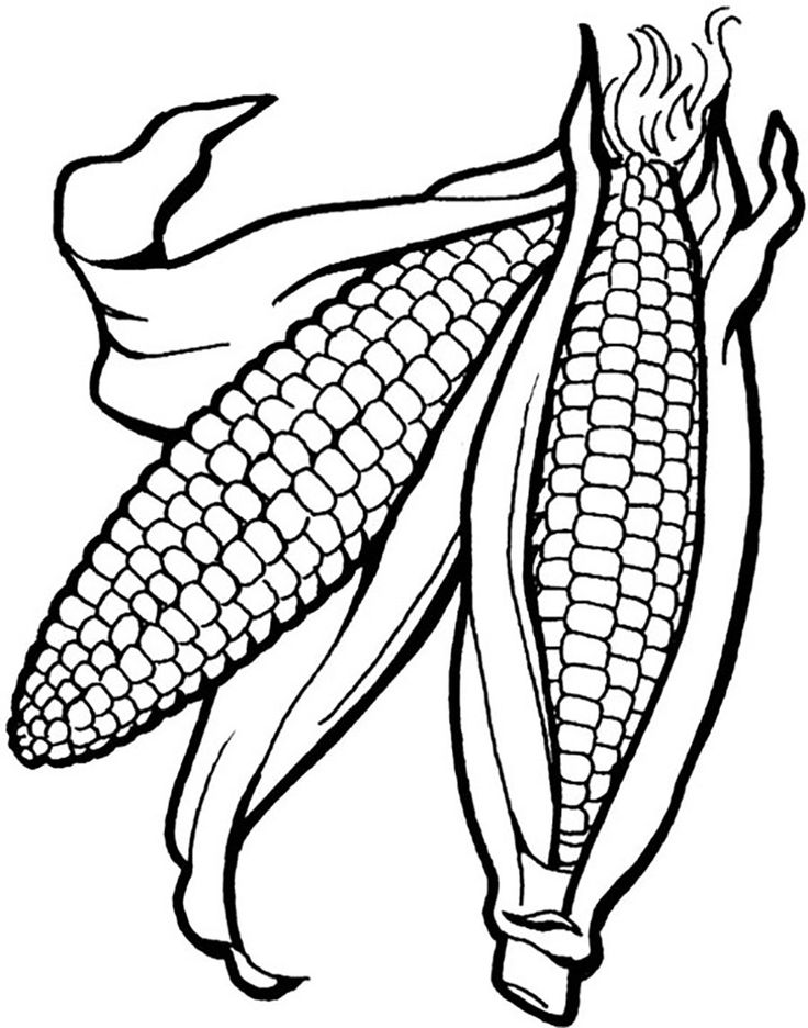 31 best food coloring pages images on pinterest food for Coloring page of corn