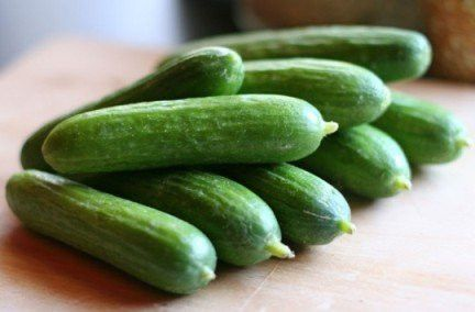 Spacemaster Cucumber Seeds, 1 Pound