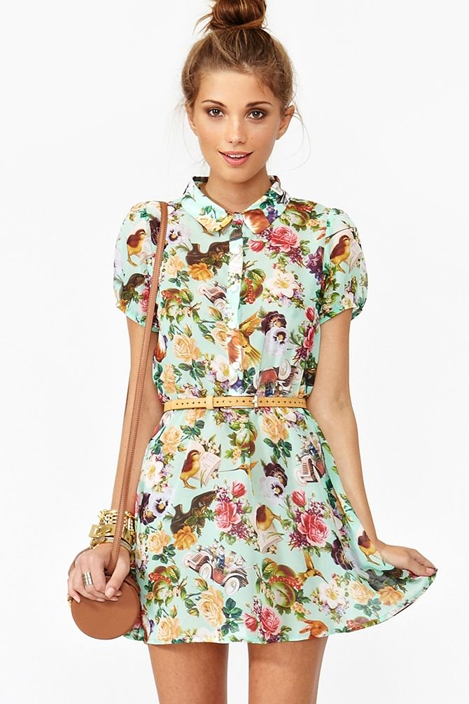 The print on this dress has flowers,little animals and it's an aqua shirt dress what more could I ask for???