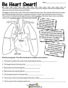 This exercise teaches the basics of the circulatory story system. through and easy to understand diagram. Students learn definitions, terms and locations of organs that keep the blood circulating through the heart and body. Students also learn the benefits of exercise to keep the heart and body healthyFind over 330 learning activities at the Health EDventure store.