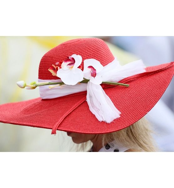 kentucky derby hats....so pretty!: Derby Party, Photos, Rose, Fabulous Hats, Red Hats, Kentucky Derby Hats, 136Th, Mad Hatter
