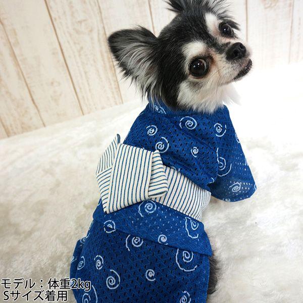 【楽天市場】Coo Couture(クークチュール) cool×cool(クール×クール)浴衣うず巻き【送料無料】【小型犬~中型犬用 ドッグウェア 犬服 暑さ対策 防虫・消臭】【メール便可】【犬用品/いぬ/ペット・ペットグッズ/ペット用品】:コジコジ