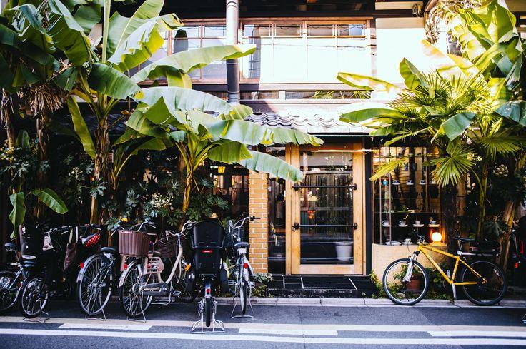 Cafe Bibliotic Hello!, Kyoto