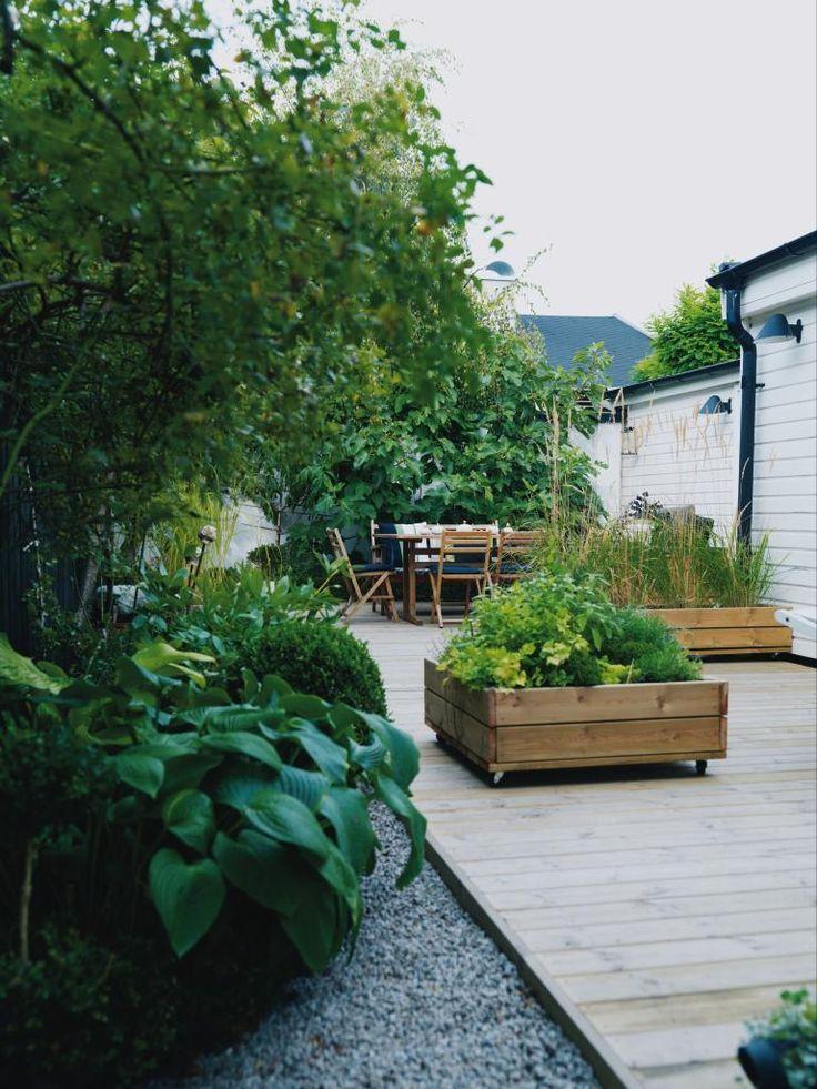 Susannes och Pontus lilla trädgård är nästan täckt av ett trädäck med växter i rullande lådor. Men här ryms också rabatter som grönskar och blommar året om, fikon- och persikoträd.