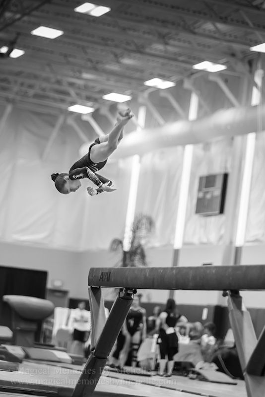 Beam Dismount Magical Memories by Michelle