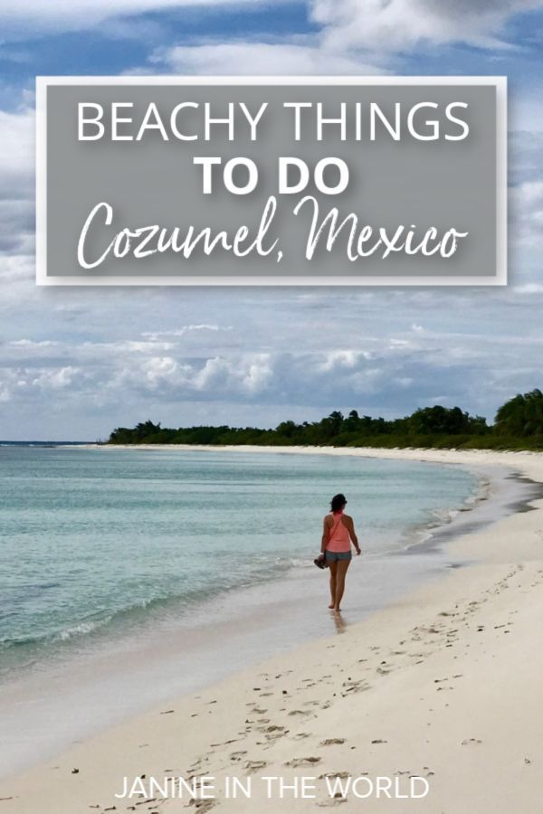 Discover All The Best Things To Do In Cozumel Mexico From
