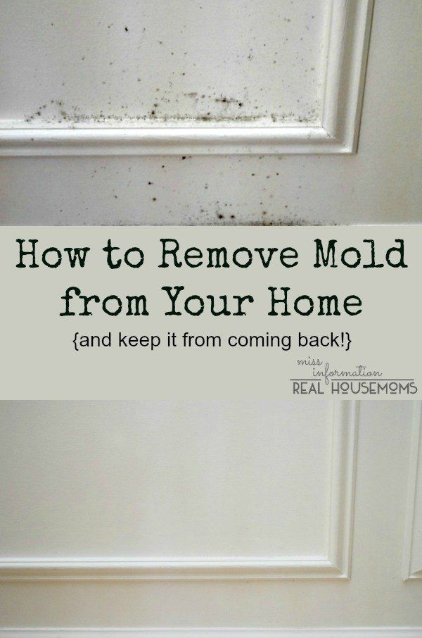 1000+ ideas about Remove Mold on Pinterest | Cleaning mold ...