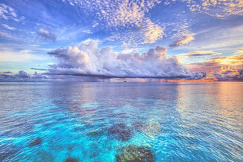Lovely as a photo....Scuba diving in the tropics. I definitely want to try this sometime