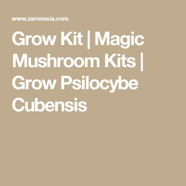 Grow Kit | Magic Mushroom Kits | Grow Psilocybe Cubensis